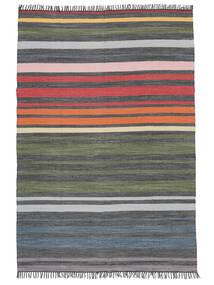 Rainbow Stripe - Šedá Koberec 140X200 Moderní Ruční Tkaní Tmavošedý/Olivově Zelený (Bavlna, Indie)