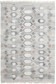 Venkovní Koberec Martha Koberec 160X230 Moderní Ruční Tkaní Světle Šedá ( Indie)