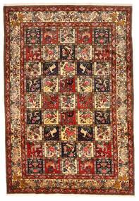 Bakhtiar Collectible Koberec 212X311 Orientální Ručně Tkaný Tmavě Červená/Tmavě Hnědá (Vlna, Persie/Írán)